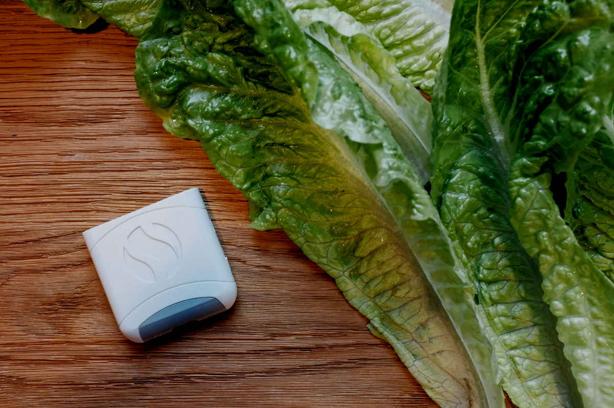 White AIRE device beside lettuce