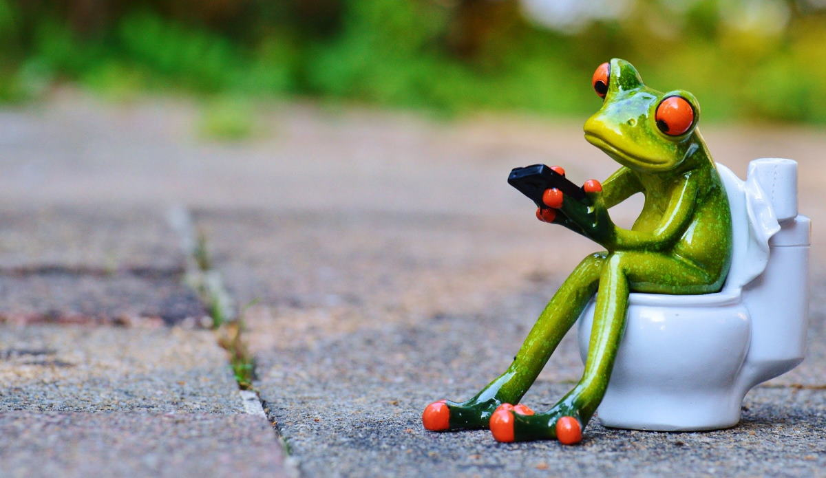 Let's Talk About Poop Header ceramic frog sitting on toilet reading mobile phone