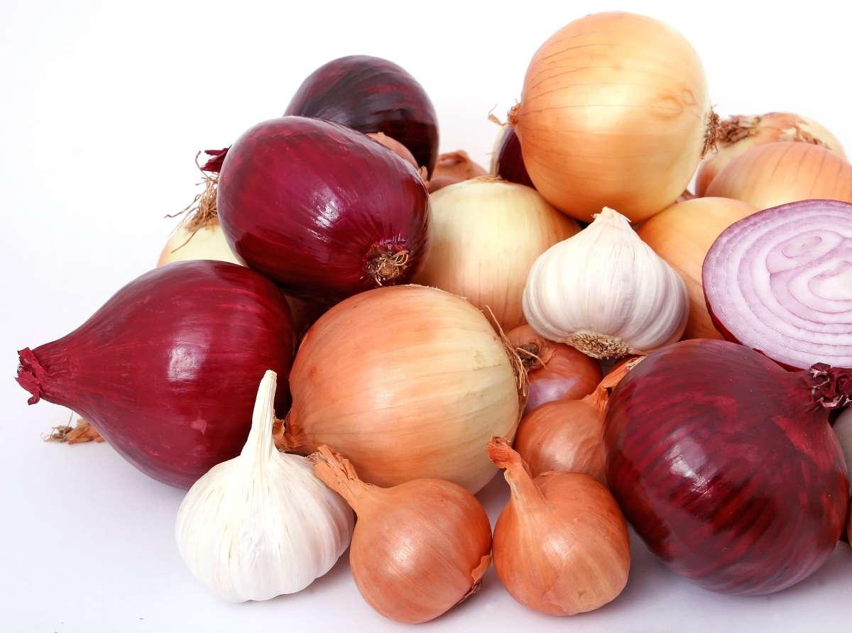 garlic and onion bulbs