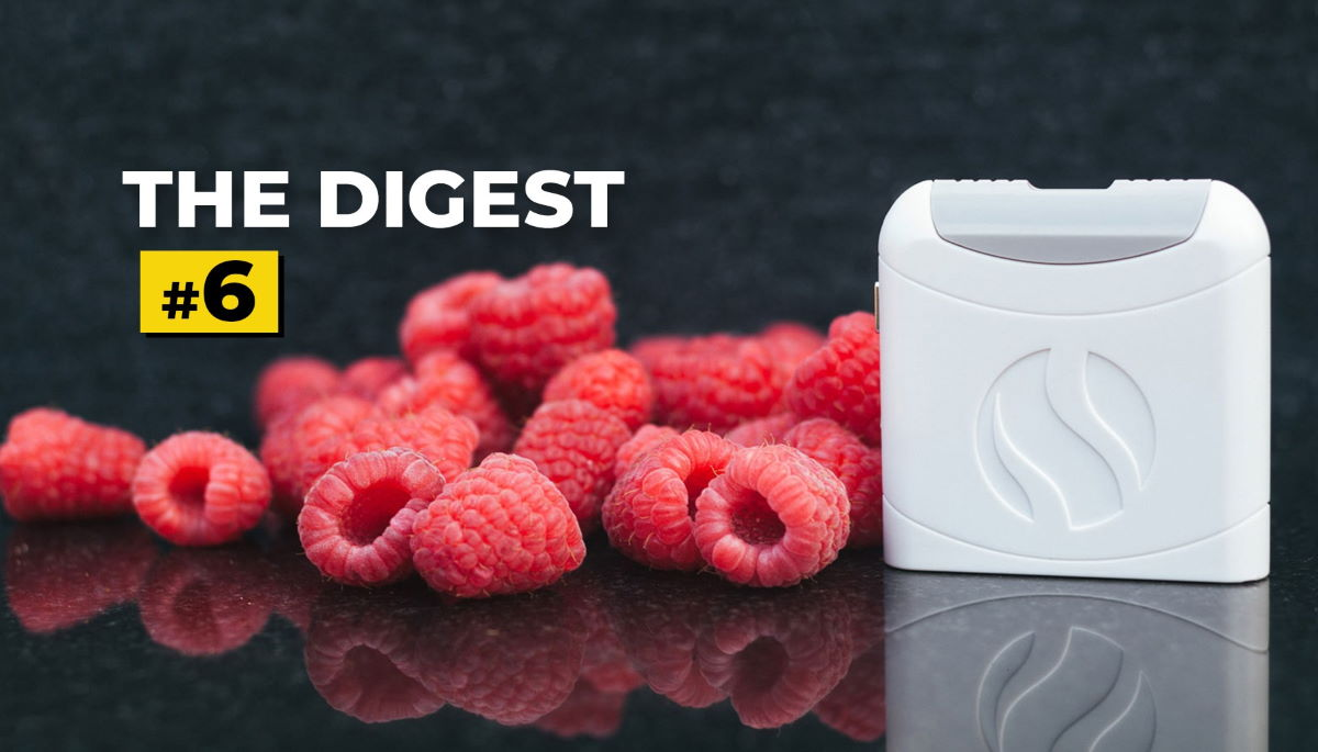 The Digest 6 Featured Image - raspberries with white AIRE